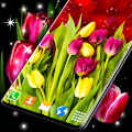 Tulip Live Wallpaper 🌷 Spring Flowers Garden APK