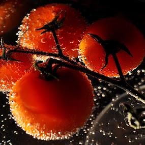 tomatoes by Albina Jasinskaite - Food & Drink Fruits & Vegetables ( red, vegetables, summer, garden, tomatoes,  )