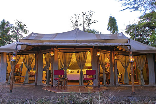 A home from home: Ehlane Plains camp combines luxury in a wild African savannah setting, in the heart of the continent's world-famous Serengeti National Park. It is one of five run by Nasikia Camps, a company behind which is a love story of an Australian nurse and a dreamer from Tanzania. Picture: SUPPLIED