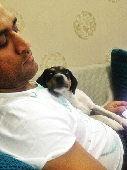 ms dhoni with his dog