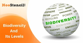 Biodiversity And Its levels