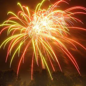 July 4th celebration  by Martin Wheeler - Public Holidays July 4th ( july 4th fireworks fire pyrotechnics celebration fun crowd festival people,  )