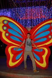 Эффект бабочки. Крылья Бабочки. Крылья Бабочек. #КрыльяБабочки