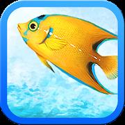 Pacific Fishing 24