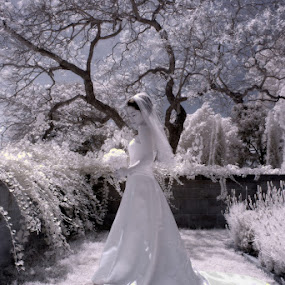 Magic garden by Scott Nelson - Wedding Bride