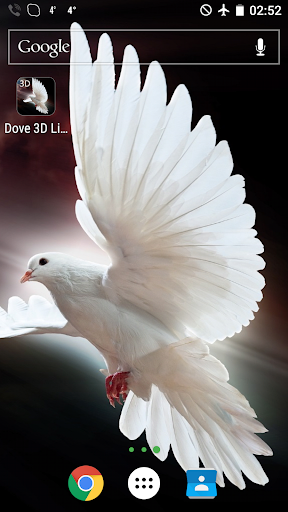 Dove 3D Live Wallpaper