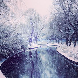 Fairy tale winter by Francisco Little - Instagram & Mobile Android ( reflection, china, snow, winter, beijing,  )