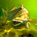 My Fishing World - Realistic fishing icon