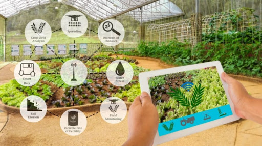 A Farmer's Guide to Technology