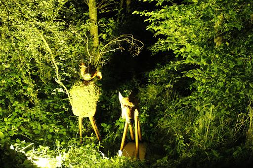 6ème Marche Nocturne à Sainte-Hélène