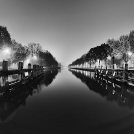 Pale by Ammar Alkhatib - Black & White Landscapes ( water, nature, black and white, bw, trees, landscape photography, landscapes, landscape, river )