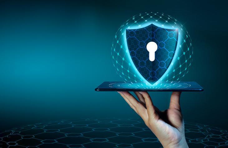 Protección base de datos
