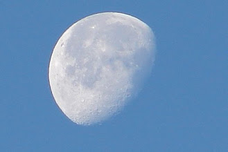 Photo: Day 89 ... The morning moon from my driveway in Little Falls