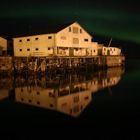Aurora above the old fish factory by Sigbjørn Berg - Landscapes Starscapes ( winter, nykvåg, northern lights, aurora borealis, vesterålen, reflections, nordland, fish factory, northern norway )