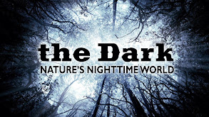 The Dark: Nature's Nighttime World thumbnail