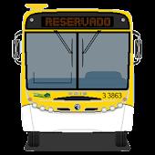 Ônibus São Paulo - Olho Vivo
