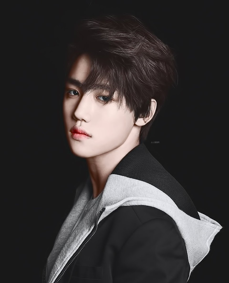 male kpop idol visuals 3