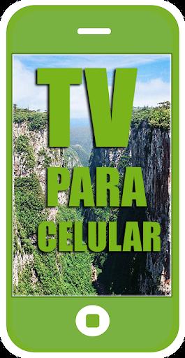 TV PARA CELULAR 26.0 screenshots 1