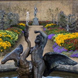 Fountain by Chris Seaton - City,  Street & Park  City Parks ( fountain, english garden, architectural detail, garden, archi )