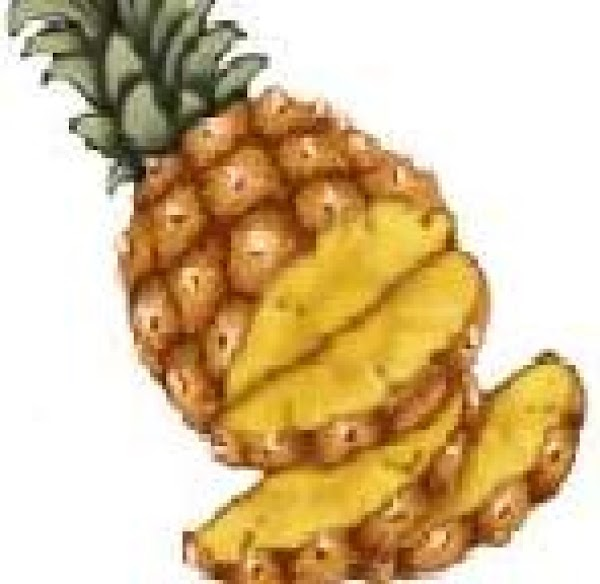 Pineapple Smoothie  (lactose Free) Recipe