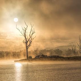 Morning mist over Lake Awoonga by Gurung Purna - Landscapes Sunsets & Sunrises ( clouds, tree, sunrise, light, sun, mist,  )
