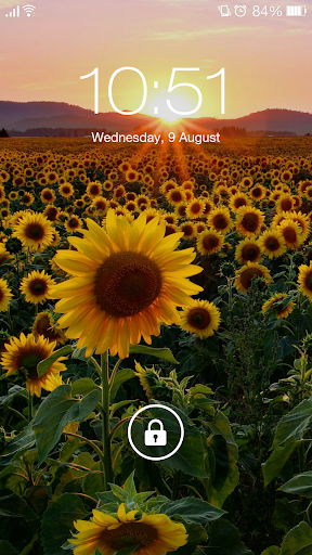 Sunset Wallpapers & Lock screen Photo QHD for PC