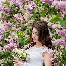 Wedding photographer Igor Stasienko (Stasienko). Photo of 18.05.2016