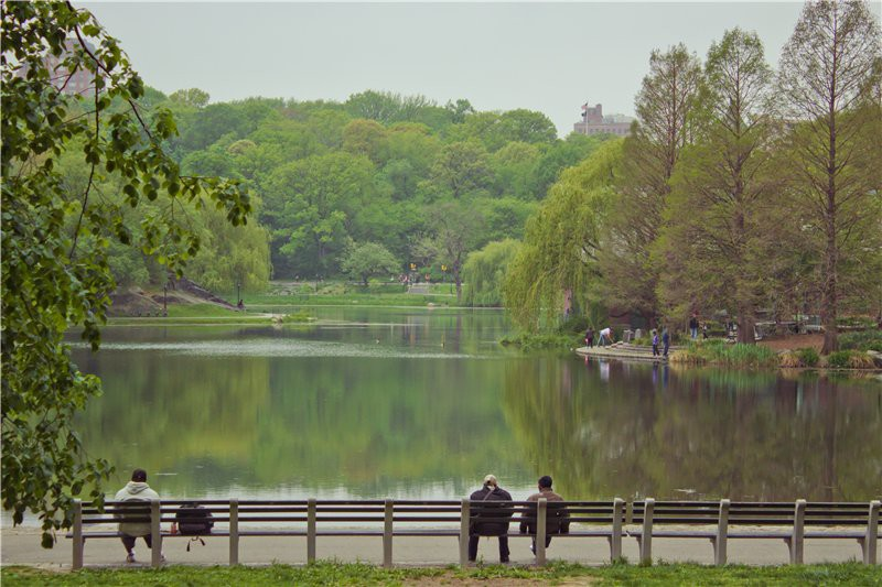 Озеро Harlem Meer. США глазами туриста, туризм, факты