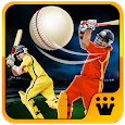 World T20 Cricket Champs 2018 apk
