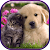 Cute Cat & Dog Live Wallpapers file APK for Gaming PC/PS3/PS4 Smart TV