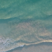 Beach Waves Live Wallpaper