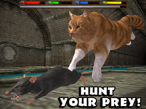 Download Ultimate Cat Simulator MOD APK 7