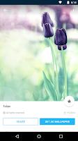 Screenshot of Backgrounds HD (Wallpapers)