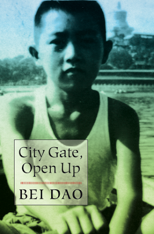 cover image for City Gate, Open Up