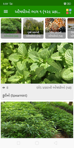 Download Ayurveda Health Tips Free For Android Ayurveda Health Tips Apk Download Steprimo Com