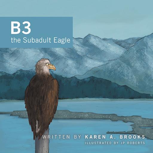 B3 the Subadult Eagle cover