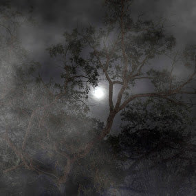 foggy night by Brook Kornegay - Landscapes Cloud Formations (  )