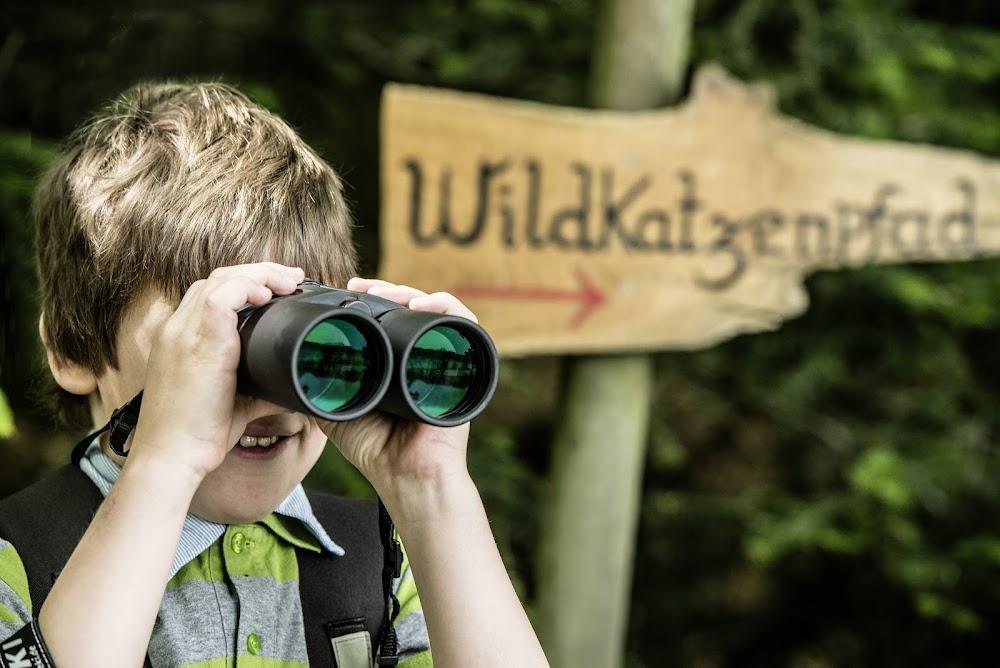 Interessierter Junge guckt durch Fernglas Urlaub Schwarzwald Wandern Schwarzwald