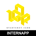 Kvarteret Igor Intern