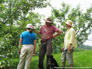 Photo: John and Nancy Hayden (L) of The Farm Between shows NE-SARE's Carol Delaney (R) pest management strategies for fruit trees.