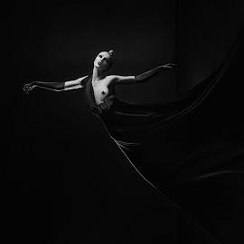 Beautiful phantom by DMYTRO SOBOKAR - Nudes & Boudoir Artistic Nude ( sobokar.com, b&w, nude, artphotography, black and white, dress, woman, art, sobokar, photography, portrait )