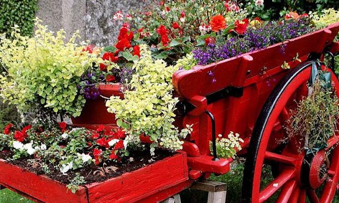 Beautiful Flower Garden Escape - screenshot