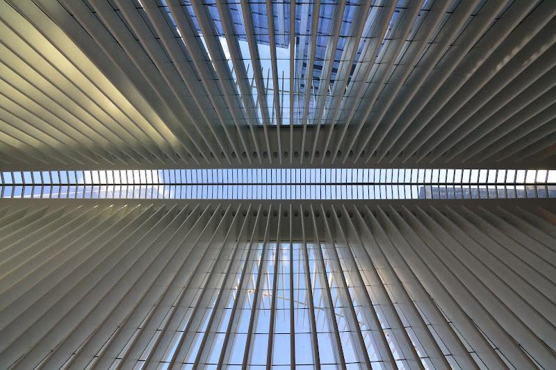 Simmetrie a New York di MaxMena5