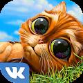 Indy Cat for VK