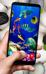 KOI Fish Live Wallpaper : New fish Wallpaper 2020 3
