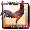 Chicken Fighter Indonésia icon