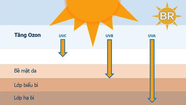 Có mấy loại tia UV