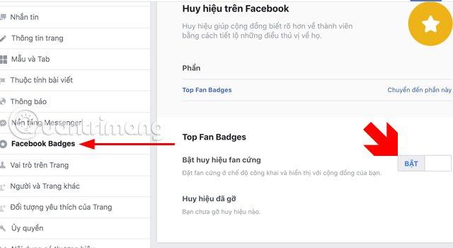 Menu thiết đặt Fanpage là Facebook Badges