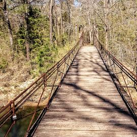 Swinging Bridge by Richard Michael Lingo - Buildings & Architecture Bridges & Suspended Structures ( tennessee, bridge, park, architecture, swinging bridge )