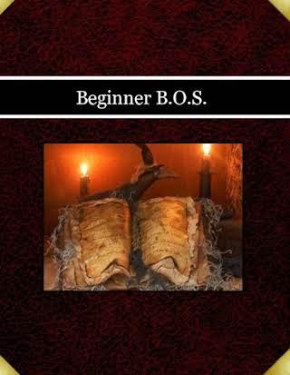 Beginner B.O.S.